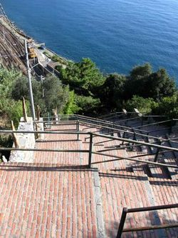 Steps-to-Corniglia